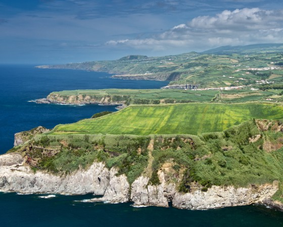 Ever-green and ever-blooming island with a scent of tea? Yes – the Azores!