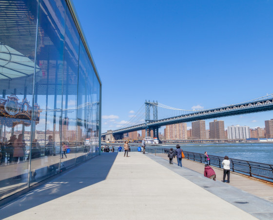 Discover the beauty of multicultural Brooklyn!
